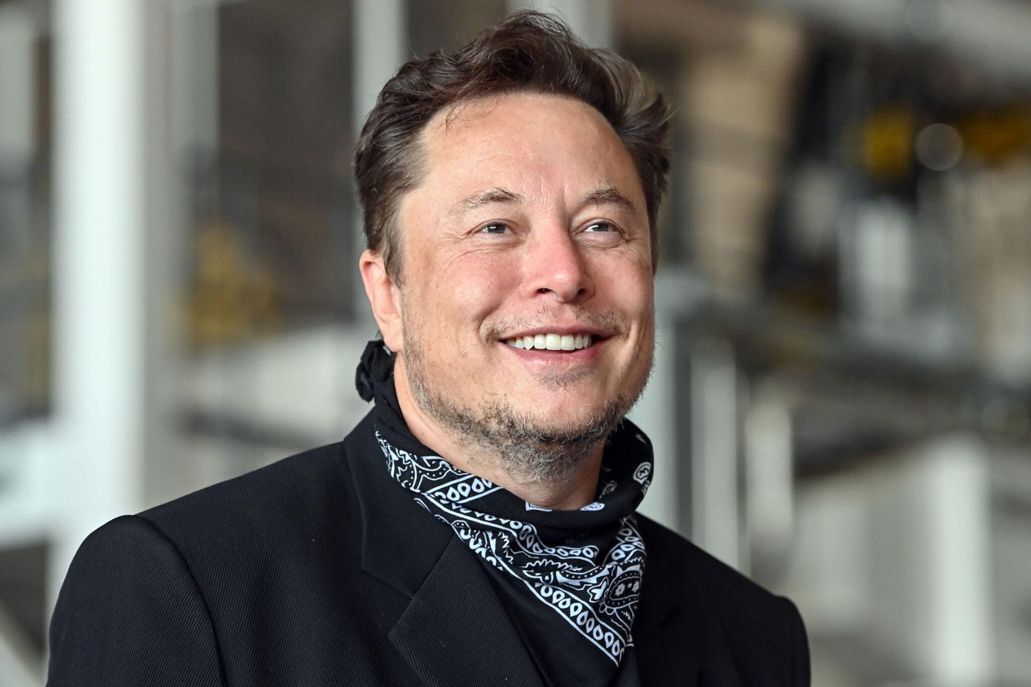 Elon Musk krytykuje regulacje